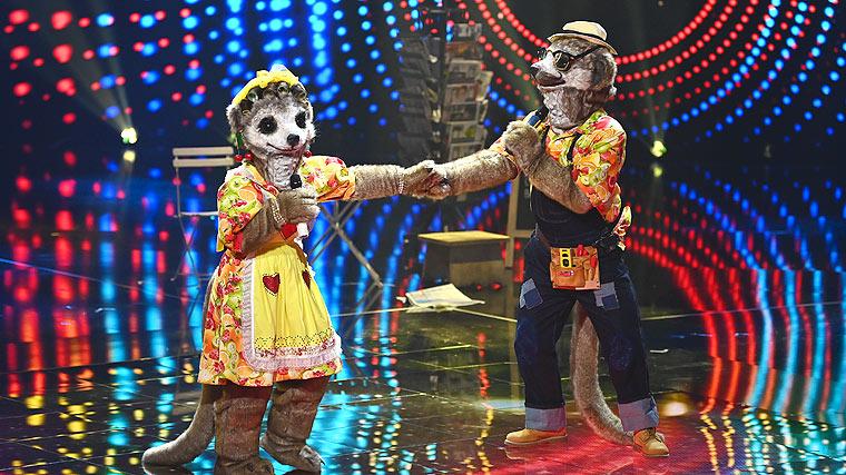 The Masked Singer, die Erdmännchen