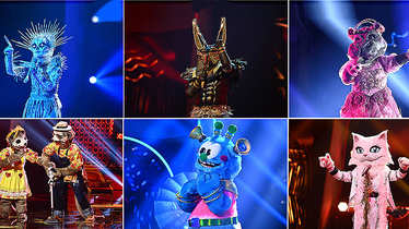 The Masked Singer, Halbfinale