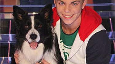 Lukas & Falco