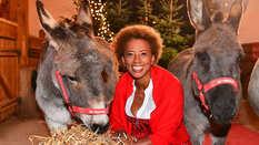 Weihnachten auf Gut Aiderbichl, Arabella Kiesbauer