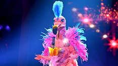 The Masked Singer, Flamingo
